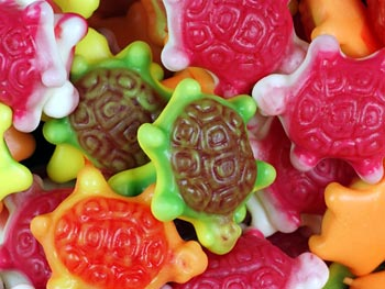 Jelly Turtles